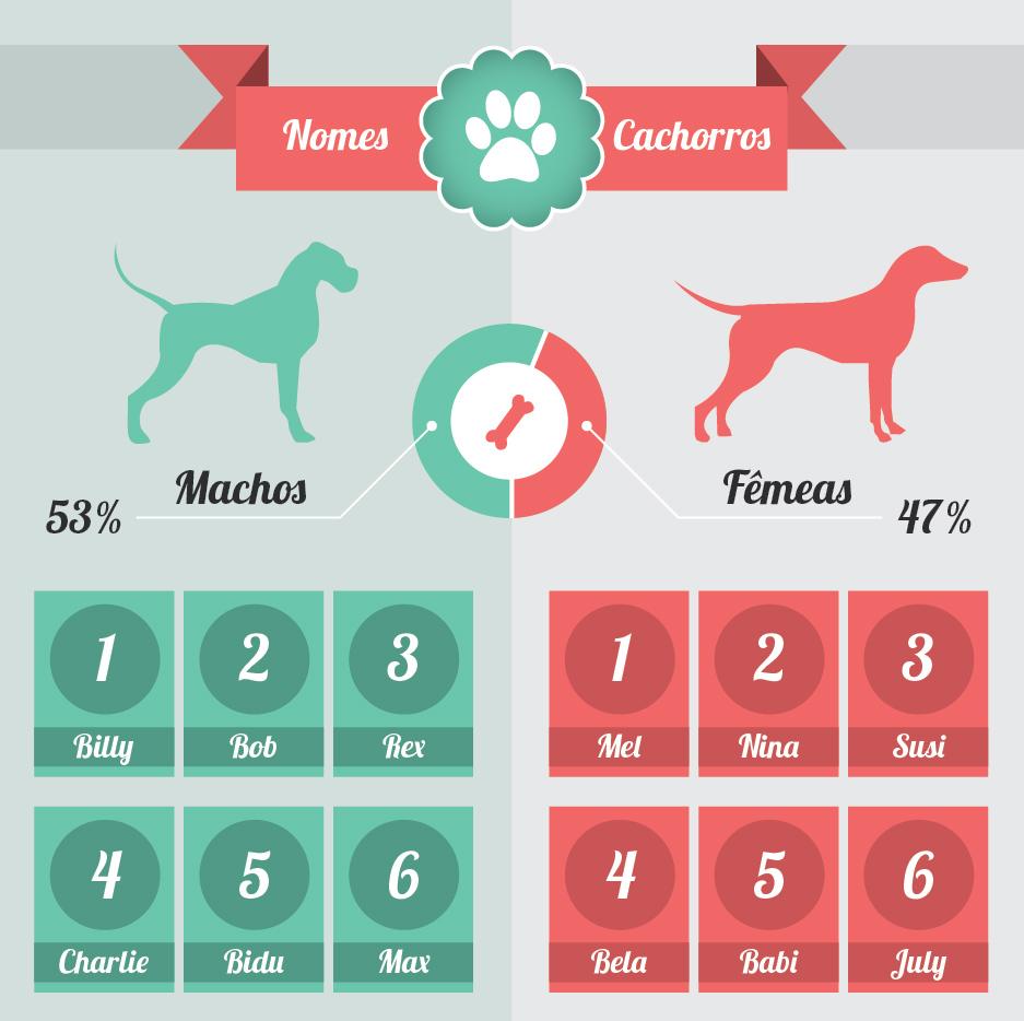 Nomes mais Populares de Cães - Machos e Fêmeas. Fonte: Cachorros Fofos
