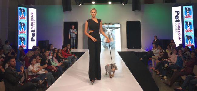 Desfile Lolipet na Pet Fashion Week
