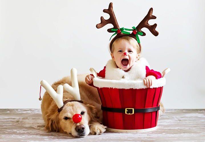 Tome cuidado com relação às crianças, caso alguma criança vá na sua reunião, veja com os pais se ela já interagiu com cães, e tenha consciencia de como seu cão reage à elas.