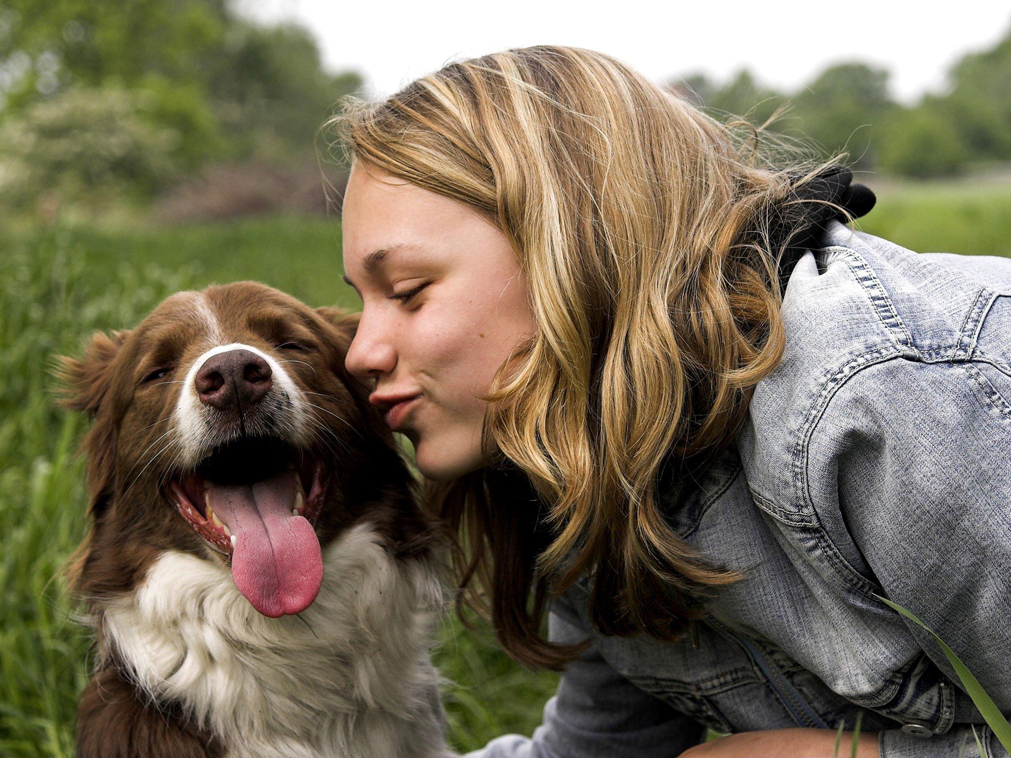 Compartilhar a vida com cães é maravilhoso, mas exige cuidados, responsabilidades e adaptação no estilo de vida.