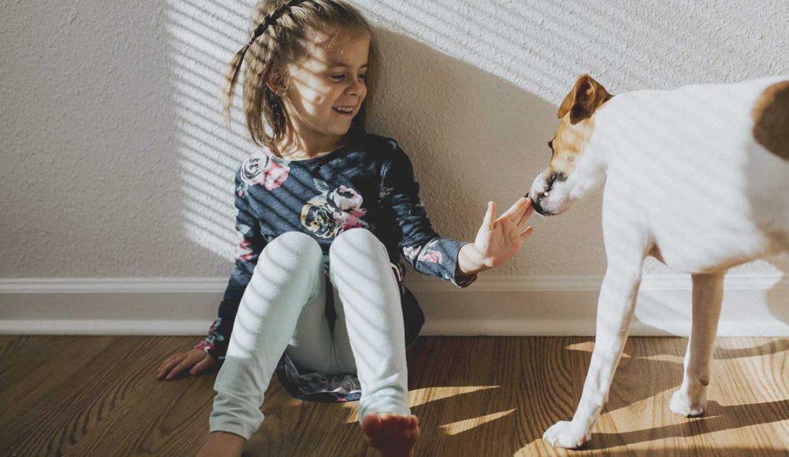Crianças e Cães - Saiba como evitar problemas
