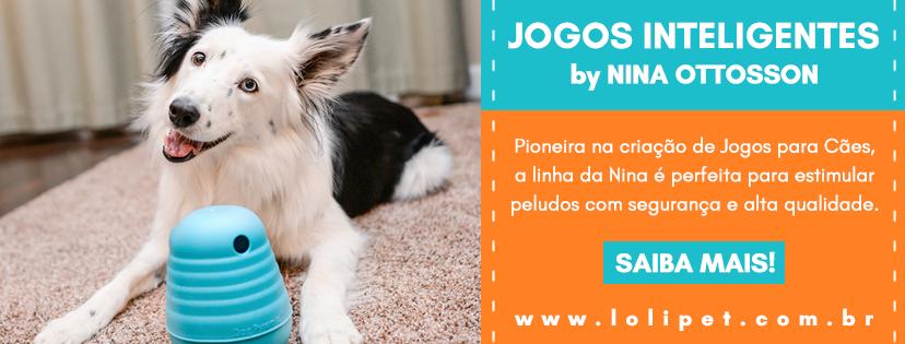 Conheça os Jogos Inteligentes para Cães by Nina Ottosson