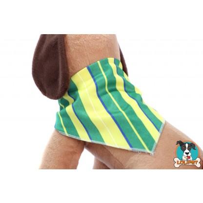 Bandana Listrada Verde e Amarelo para Cães e Gatos