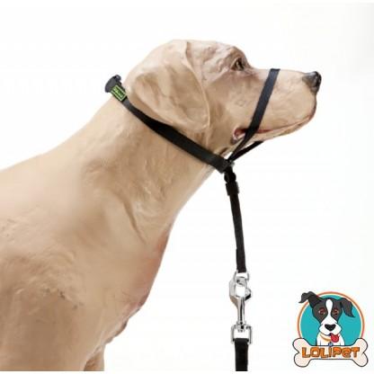 Coleira para Cães Cabresto Estilo Gentle Leader da K9 Spirit