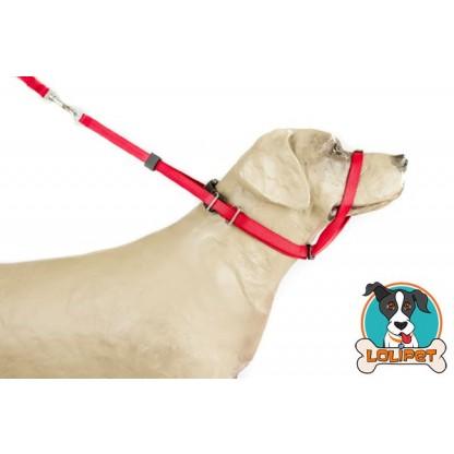 Coleira K-9 Collar para Adestramento de Cães estilo Canny Collar - K9 Spirit