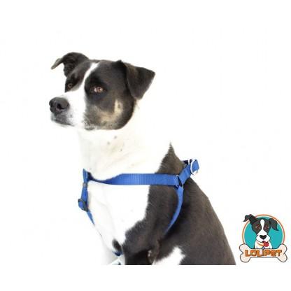 Peitoral Cachorro Grande Nylon 9