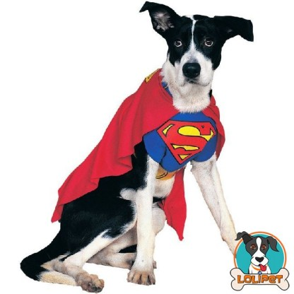 Fantasia Pet Superman 1