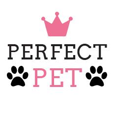 Perfect Pet - Roupinhas para Animais de Estimação
