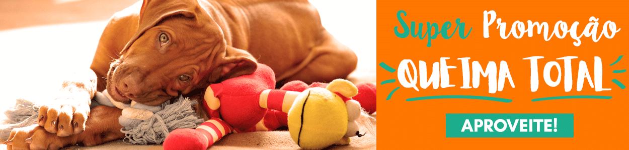 PROMOÇÃO QUEIMA TOTAL Produtos para Cães e Gatos! Confira!
